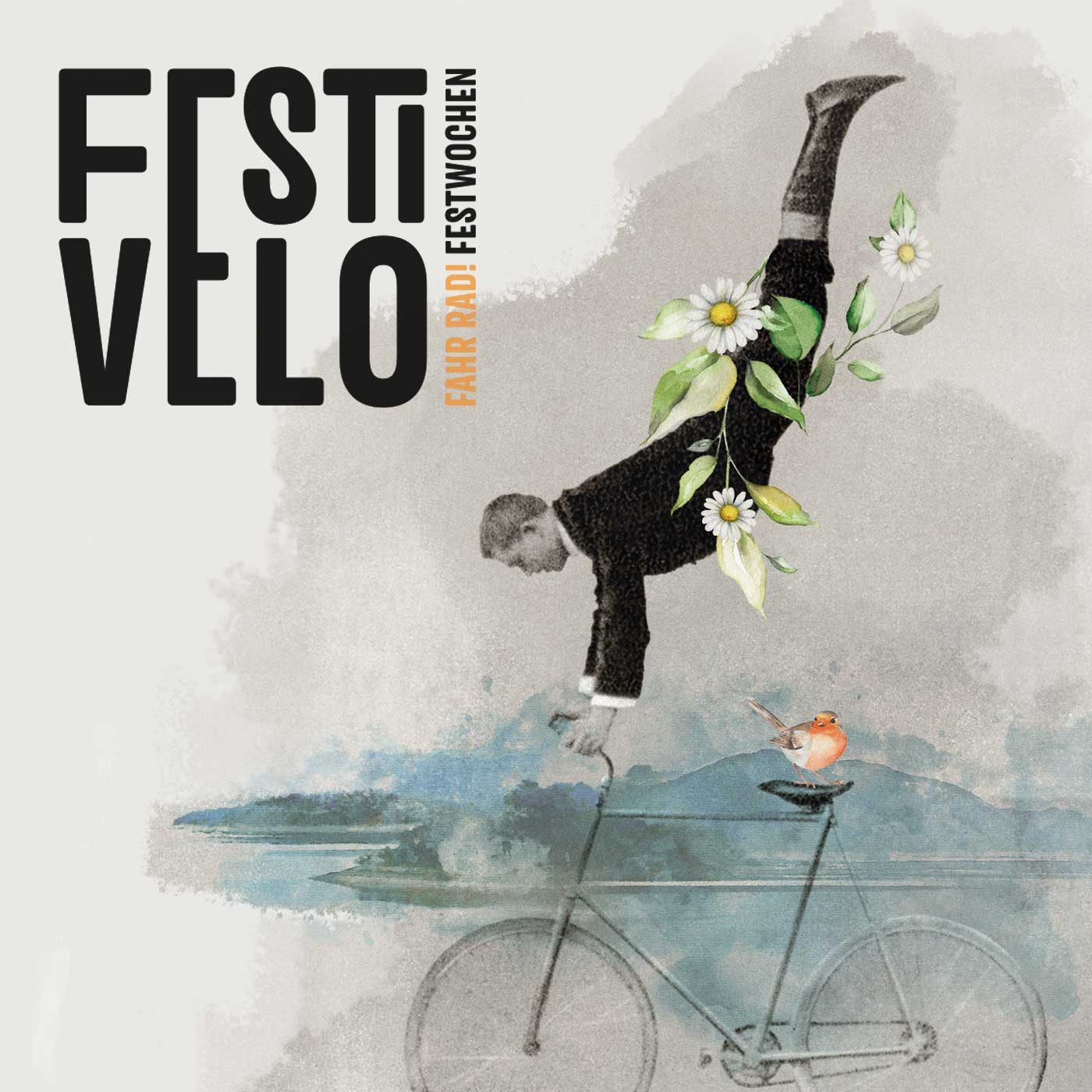 Festivelo Eventdesign